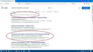 1a página do Google